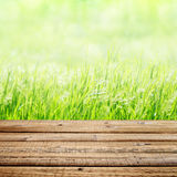 Old wooden table on green grass background Royalty Free Stock Images