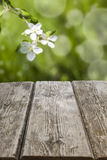 Old wooden table and spring landscape Royalty Free Stock Images