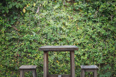 Old wooden table and wooden chairs with ornamental plants or ivy or garden tree. Royalty Free Stock Photos