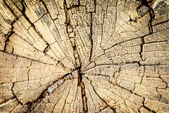 Old Wooden Textural Background In Kickback Stock Photography