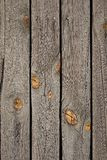 Old wooden texture Royalty Free Stock Images
