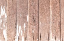 Old wooden texture background. Stock Photos