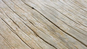 Old wooden texture background concept stock video footage