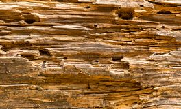 Old wooden texture, brown colors Royalty Free Stock Photos
