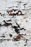 Old wooden texture Stock Photography