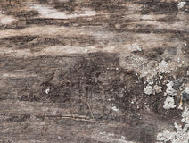 Old wooden texture with cracks Royalty Free Stock Images