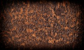 Old wooden texture. Royalty Free Stock Photography