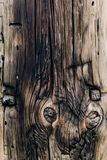 Old wooden texture with knots royalty free stock image