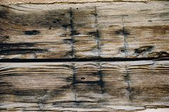 Old wooden texture with knots royalty free stock photo