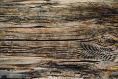 Old wooden texture with knots stock photo