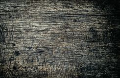 Old wooden texture with mold and scratch for background stock image