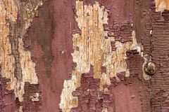 Old wooden texture with peeling paint on a wooden surface. Texture of old wood, board with paint, vintage peeling paint. Old brown royalty free stock image