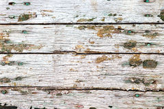 Old wooden texture. Old wooden shabby planks with cracked paint Royalty Free Stock Photos