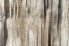 Old wooden texture, weathered obsolete rough Stock Photography
