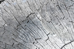 Old wooden texture of wood in the context Stock Photos