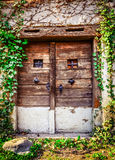 Old wooden textured door and weathered wall. With ivy stock photography