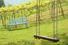 Old wooden tree swing Royalty Free Stock Photography