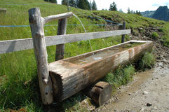 Old wooden trough Stock Images