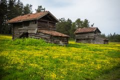 Old wooden house in the meadow. Old wooden Turkish village house in meadow with green grass, yellow flowers and trees, cloudy sky royalty free stock photography