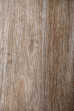 Old Wooden Veins Stock Photography