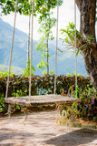 Old wooden vintage garden swing hanging from a large tree.and mo Royalty Free Stock Image