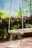Old wooden vintage garden swing hanging from a large tree.and mo Royalty Free Stock Photography