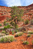 Old Wooden Wagon in Desert Royalty Free Stock Photography