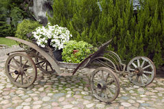 Old wooden wagon filled with flowers. Nature concept Stock Images