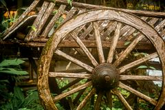 Old wooden wagon. In the rain forest of Thailand, closeup Royalty Free Stock Photo
