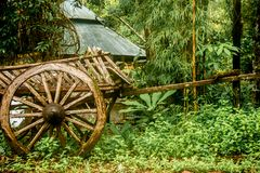 Old wooden wagon. In the rain forest of Thailand, closeup Royalty Free Stock Images