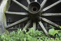 Old wooden wagon wheel. Closeup of an old wooden wagon wheel. The spokes of the wheel are rotting and slowly this wheel is being overgrown with weeds Royalty Free Stock Images