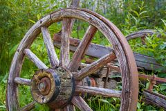 Old wooden wagon wheel in tall grass. In Barkerville, British Columbia Stock Photos