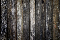 Old wooden wall. Stock Photos