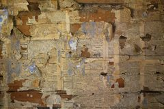 Old wooden wall decorated with Swedish newspaper fragments from 1890.  stock image