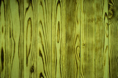Old wooden wall, green Stock Images