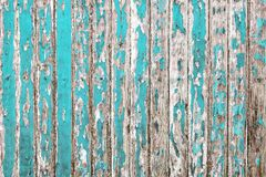 Old wooden wall painted with pale cyan color peeling revealed rustic texture royalty free stock image