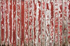 Old wooden wall painted with dark red color peeling revealed rustic texture. The old wooden wall painted with dark red color cracking, peeling and revealed the Royalty Free Stock Photography