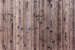 Old Wooden Wall Surface Background and Textured. Old wood wall background, retro grain plank wooden texture pattern Pine tree close up on wall made of wooden stock photography