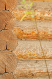 Old wooden wall. Weathered surface of the log. Royalty Free Stock Photo