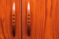 Old wooden wardrobe doors Stock Photography