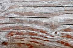 Old wooden weathered board Royalty Free Stock Photography