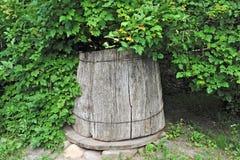 Old wooden well under viburnum Stock Photos