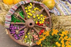 Old wooden wheel decorated with antique carpet, harvest of autumn foodstuffs and chrysanthemums. Countryside concept stock photo