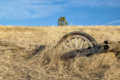 Old wooden wheel in a farmers field Royalty Free Stock Photo
