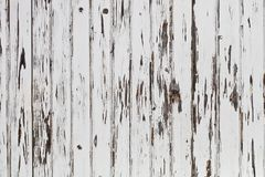 Old wooden white door background. Old wooden white door grunge texture background royalty free stock photography