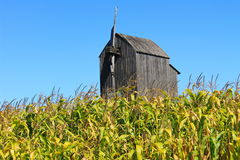 Old wooden windmill on a corn field Stock Images