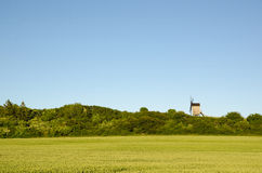 Old wooden windmill by a green wheat corn field Royalty Free Stock Photography