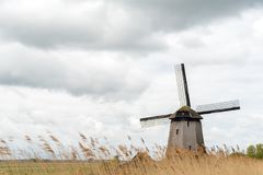 Old wooden windmill. Large view on the old wooden windmill Royalty Free Stock Photography