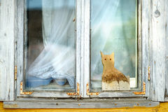 Old wooden window with decorative wooden cat Stock Photo