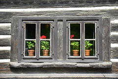 Old wooden window with flower Royalty Free Stock Photography